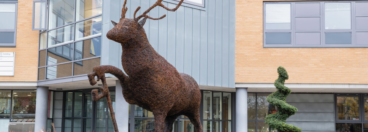 Stag sculpture outside Surrey Business School