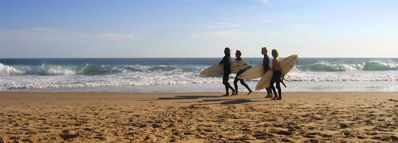 Student surfing