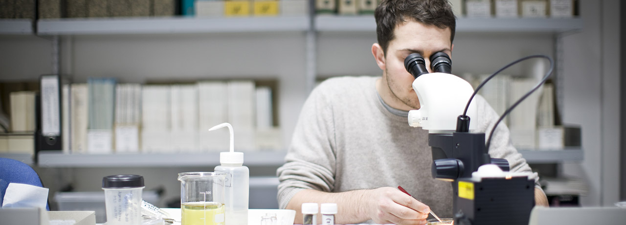 Student at work with a microscope