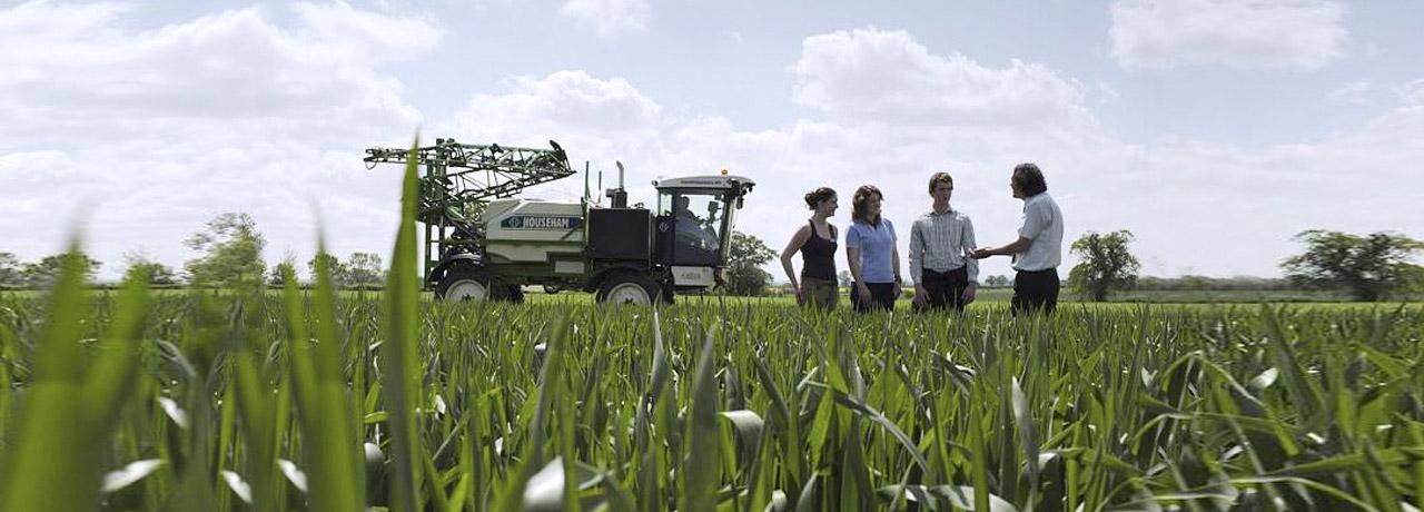 A class in a field