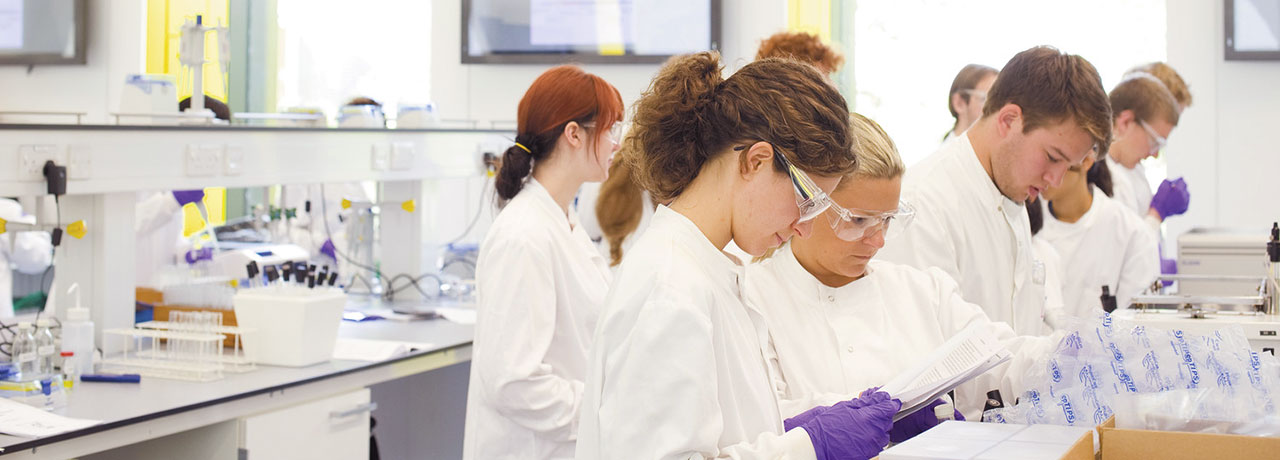 Students at work in the laboratory