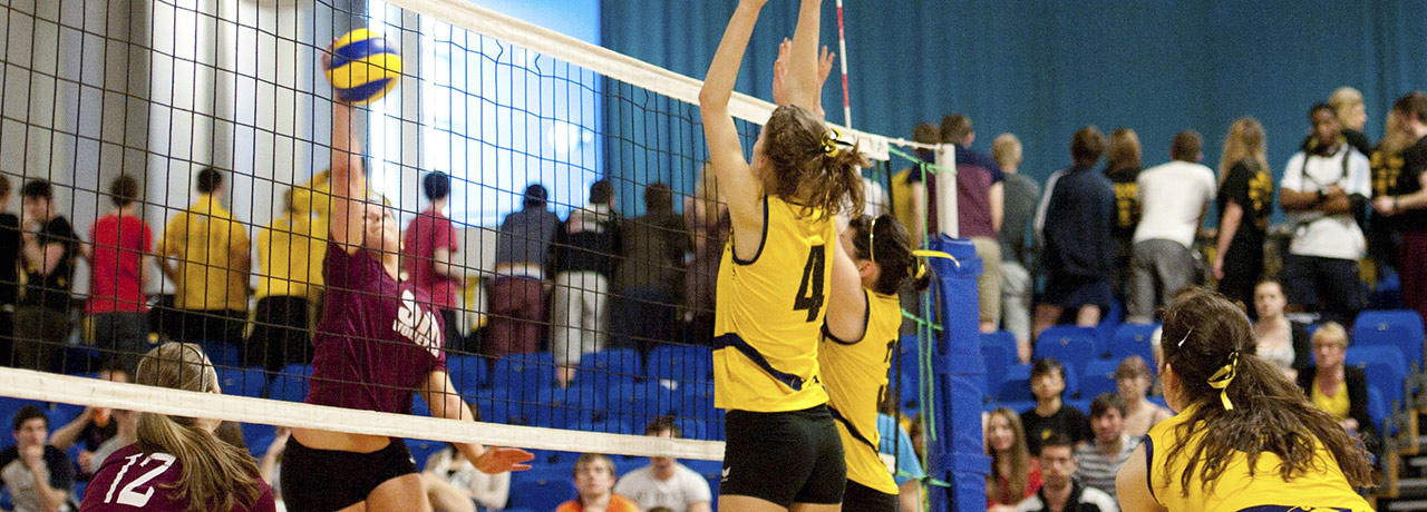 Volleyball at Sheffield